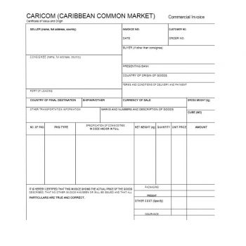 Commercial Invoice Template 17