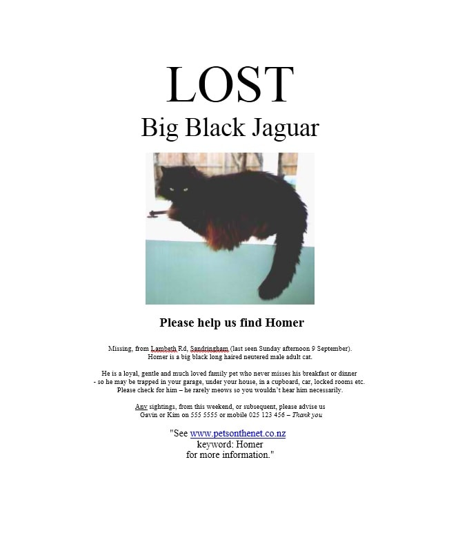 Lost poster template