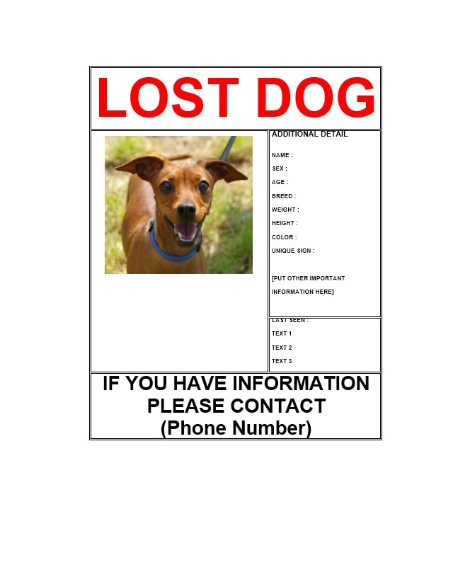 Elegant Lost Dog Flyer Template 05 Inside Lost Pet Poster