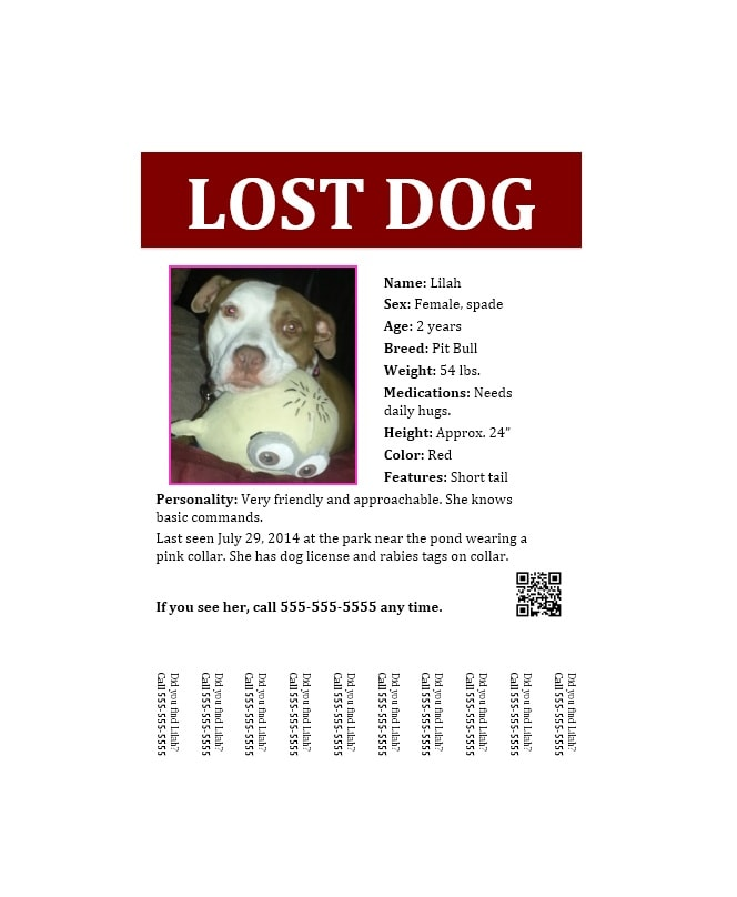 Nice Lost Dog Flyer Template 07 Throughout Lost Dog Poster Template