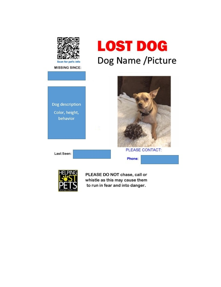 Amazing Missing Pet Template Images Resume Samples Writing – Lost Dog Flyer Template Word