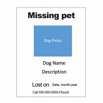 Lost Dog Flyer Template 19