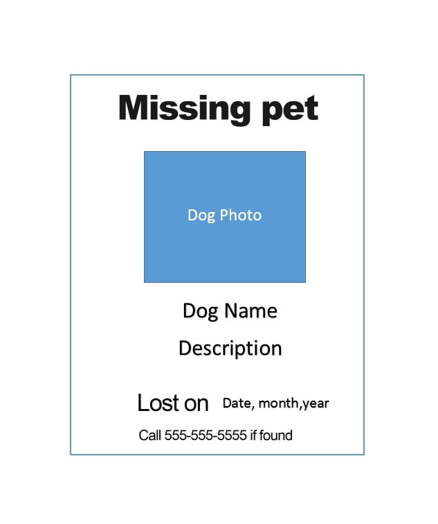 40 Lost Pet Flyers Missing Cat Dog Poster Template Archive