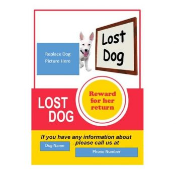 Lost Dog Flyer Template 21