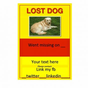 Lost Dog Flyer Template 24