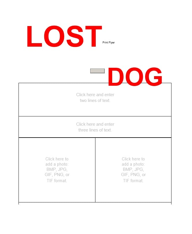 Lost Dog Flyer Template 27