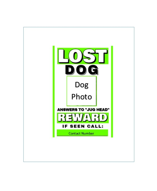 Lost Dog Flyer Template 29  Missing Dog Flyer Template