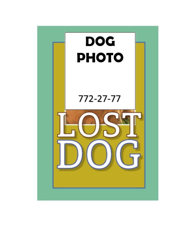 Lost Dog Flyer Template 30