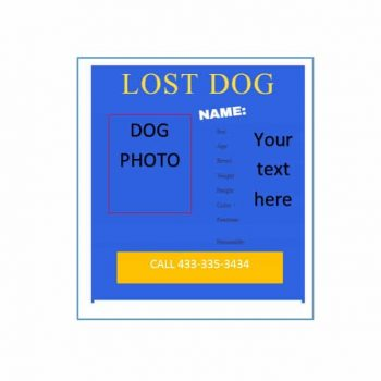 Lost Dog Flyer Template 31