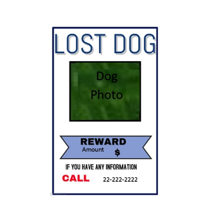 Lost Dog Flyer Template 32