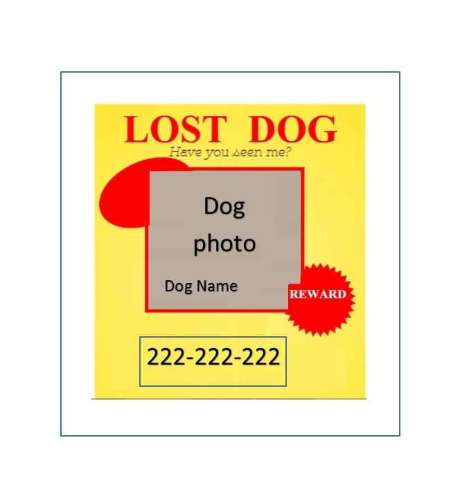 Lost Pet Flyers  Lost Pet Template
