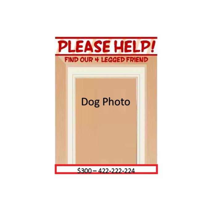 Lost Dog Flyer Template 36
