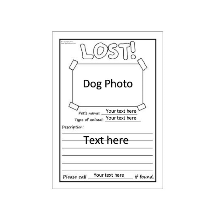 40 Lost Pet Flyers [Missing Cat / Dog Poster]   Template Archive  Lost Pet Template