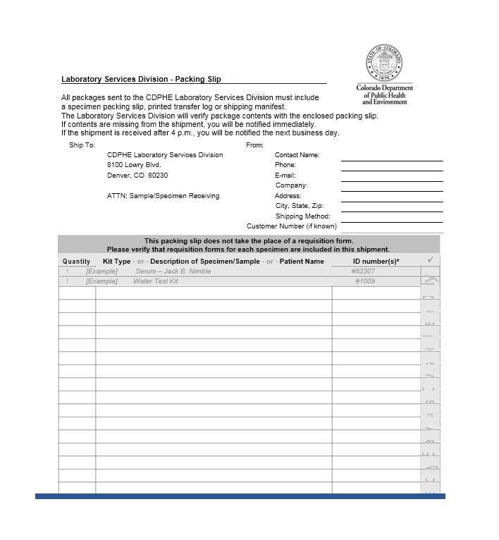 Packing Slip Template 13  Packing Slip Example