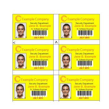 ID Card Template 50