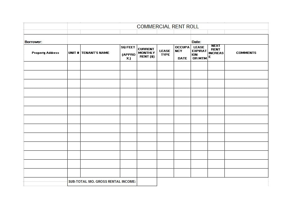 Rent Roll Template 32
