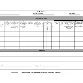 Rent Roll Template 41