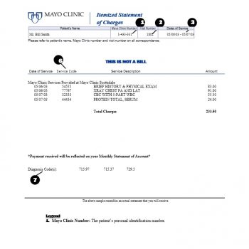Billing Statement Template 29