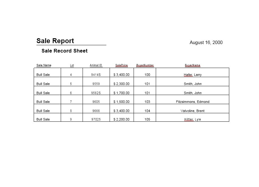 Sales Report Template 30