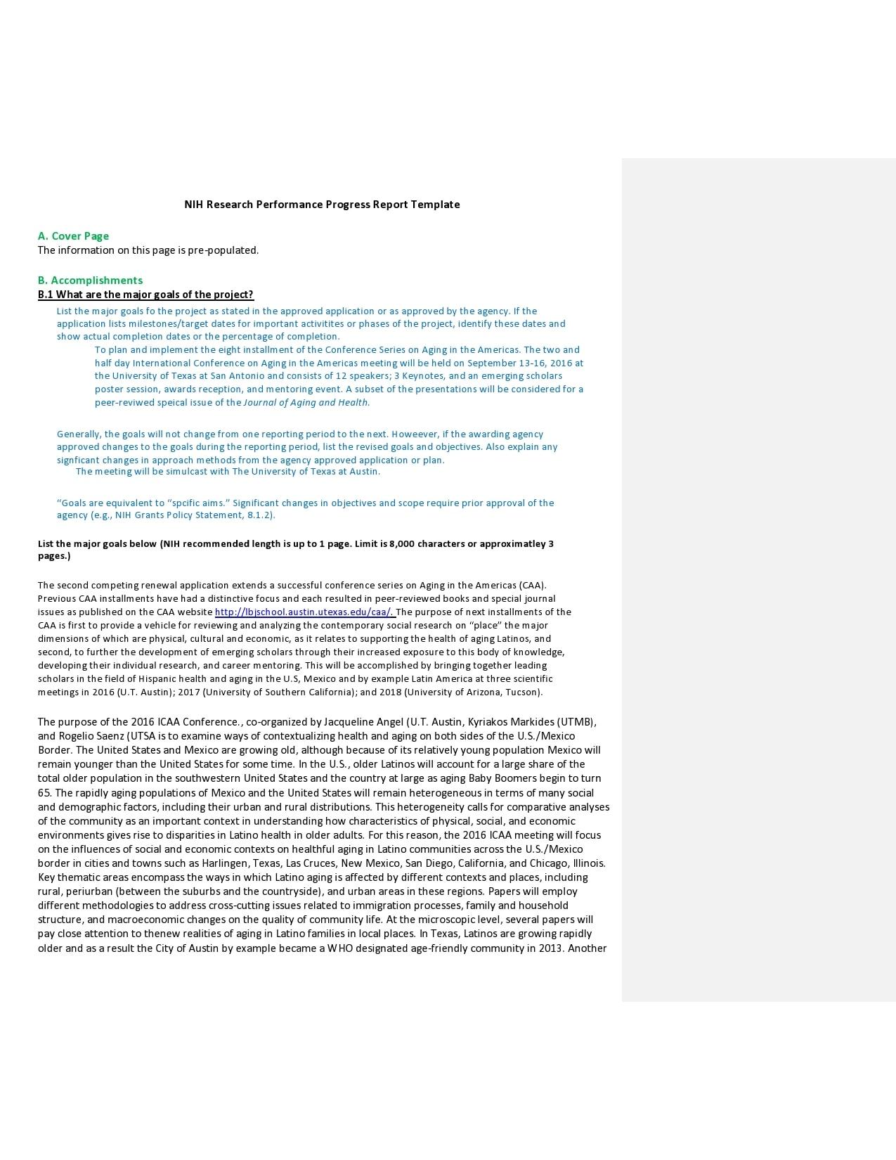 progress report template 11