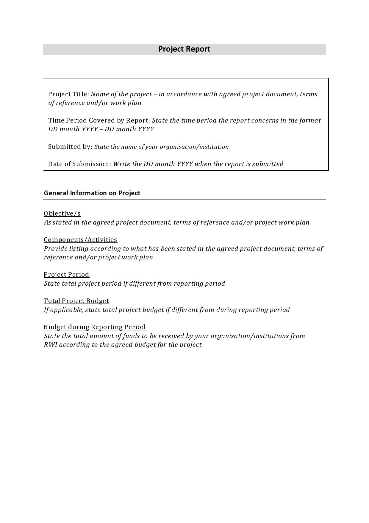 progress report template 16