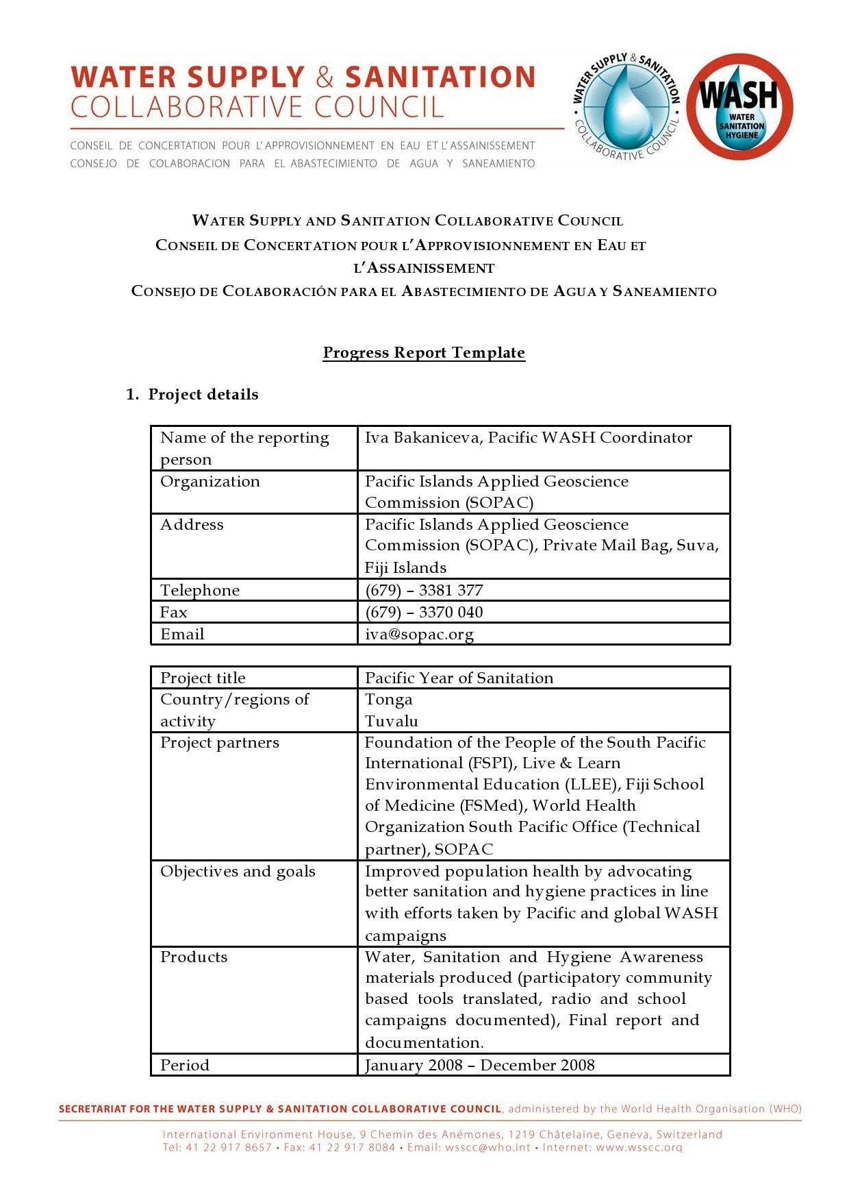 progress report template 23