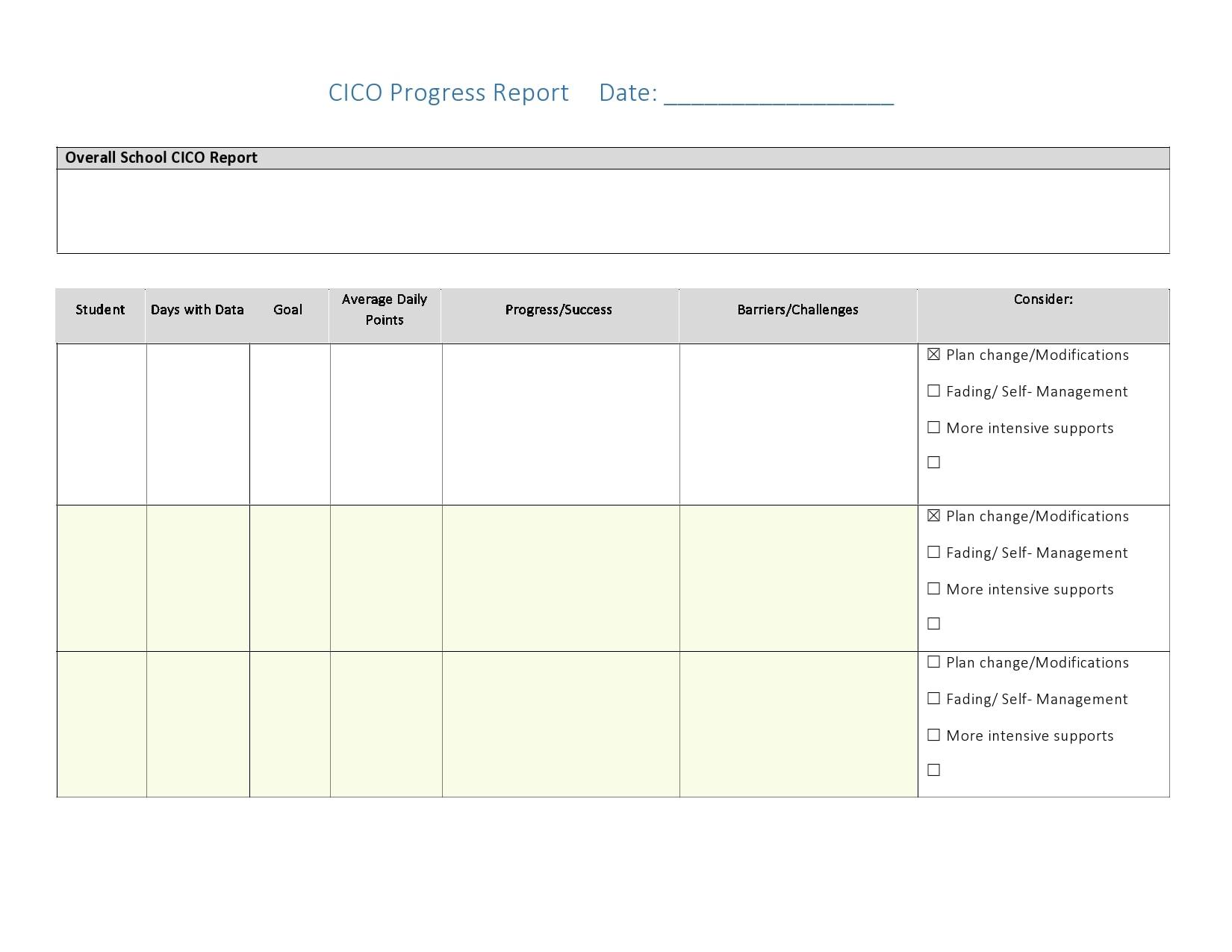 progress report template 24
