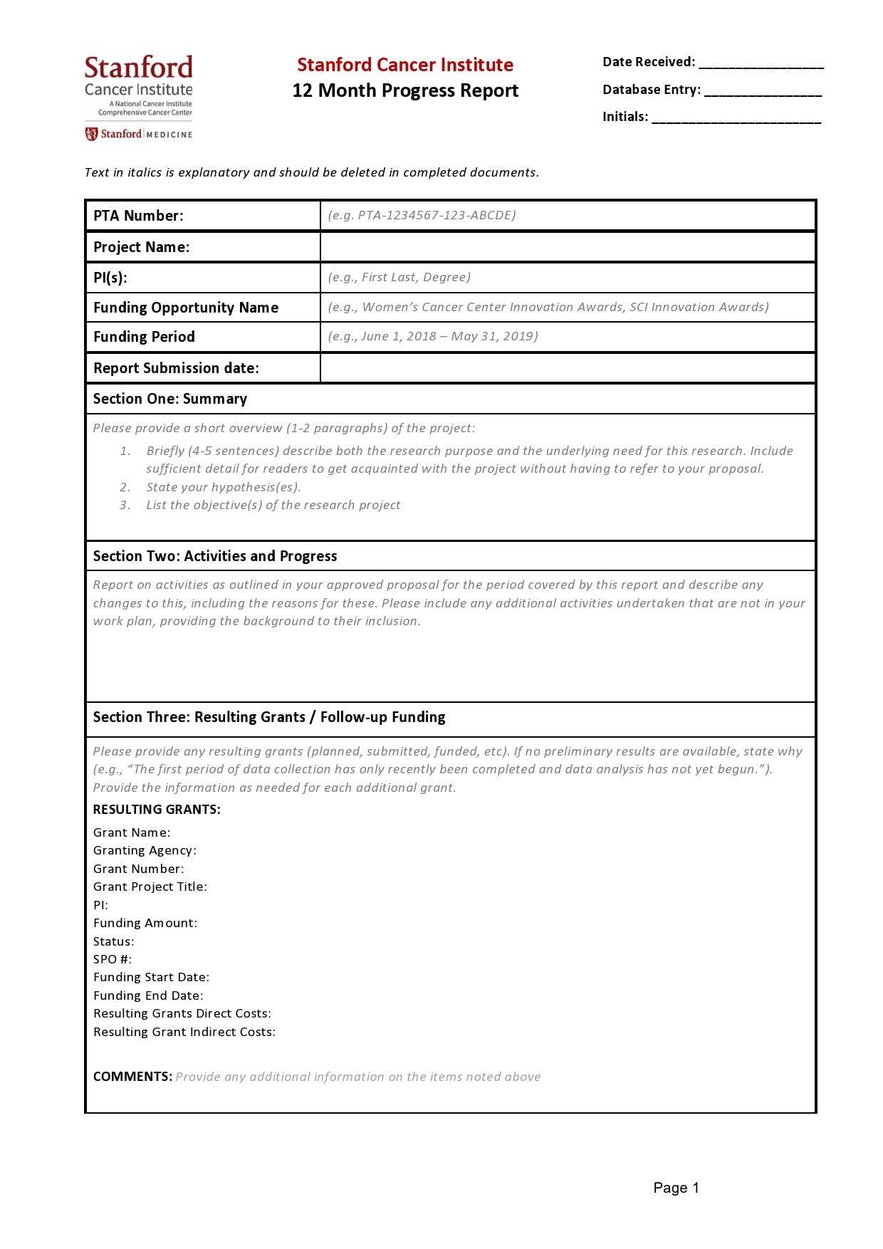 progress report template 38
