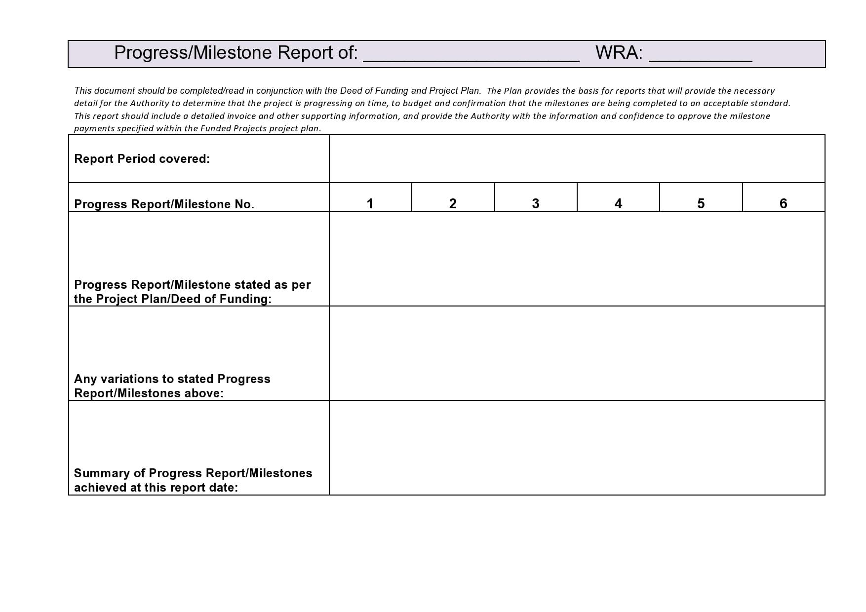 progress report template 39