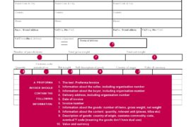 proforma invoice template 29