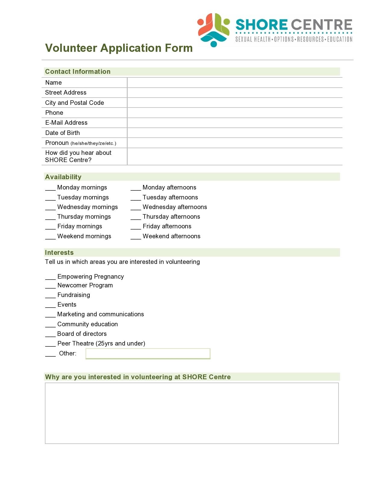 volunteer application template 17