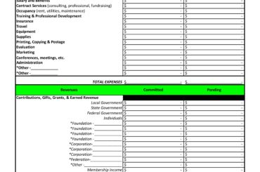 project budget template 14