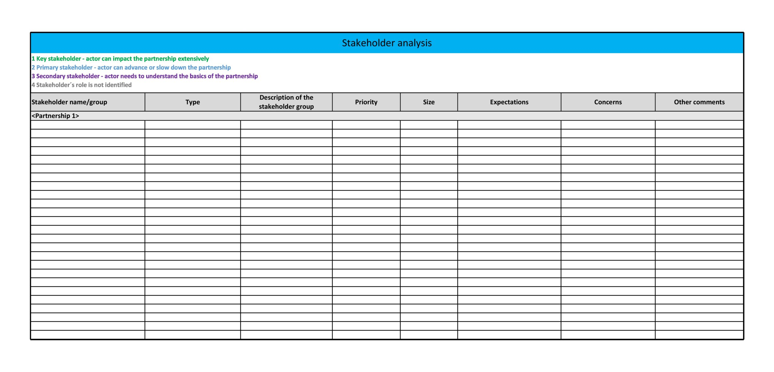 stakeholder analysis template 24