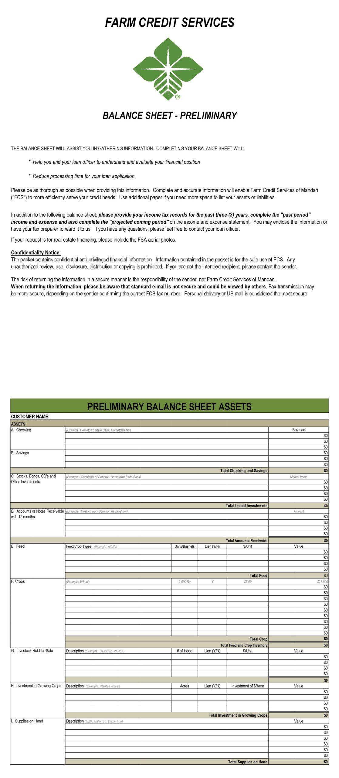 balance sheet template 19