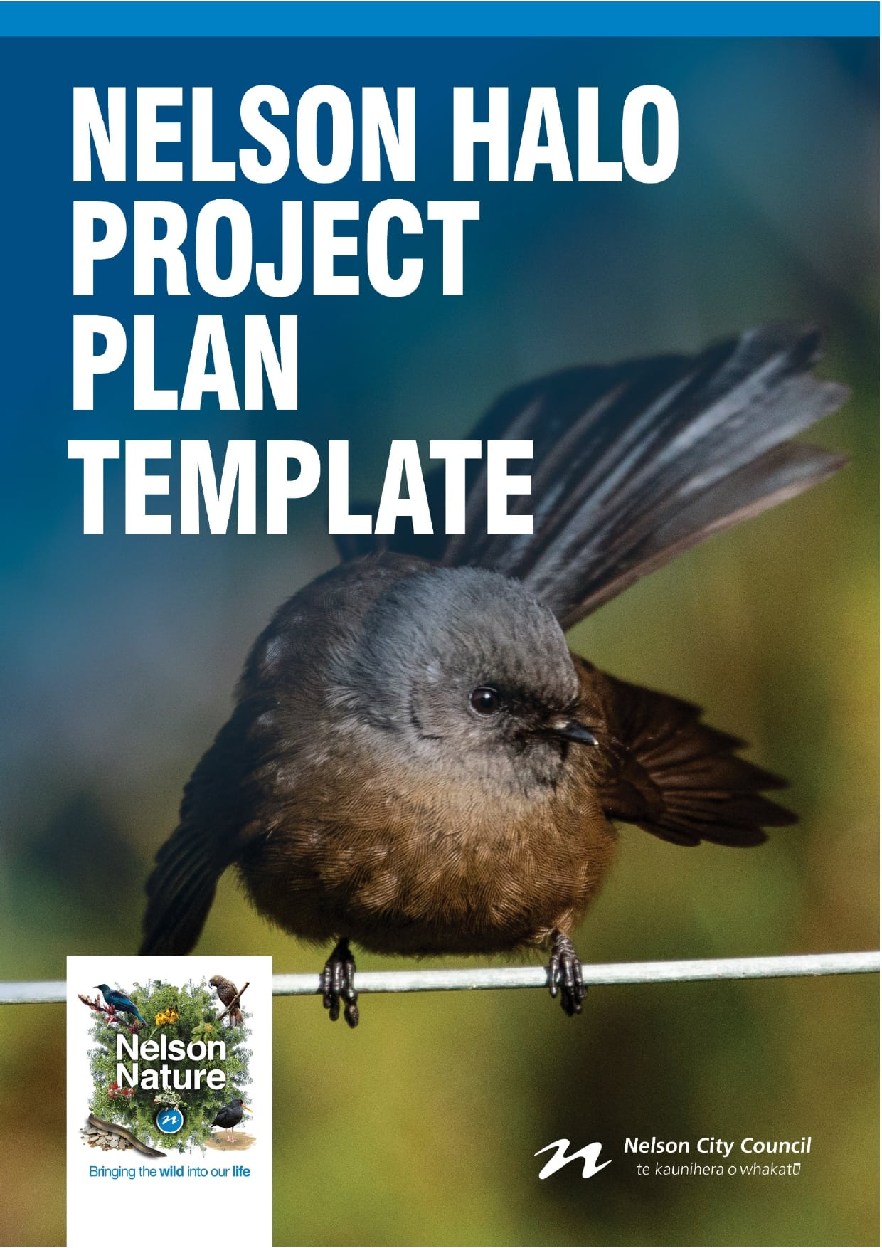 project plan example 07