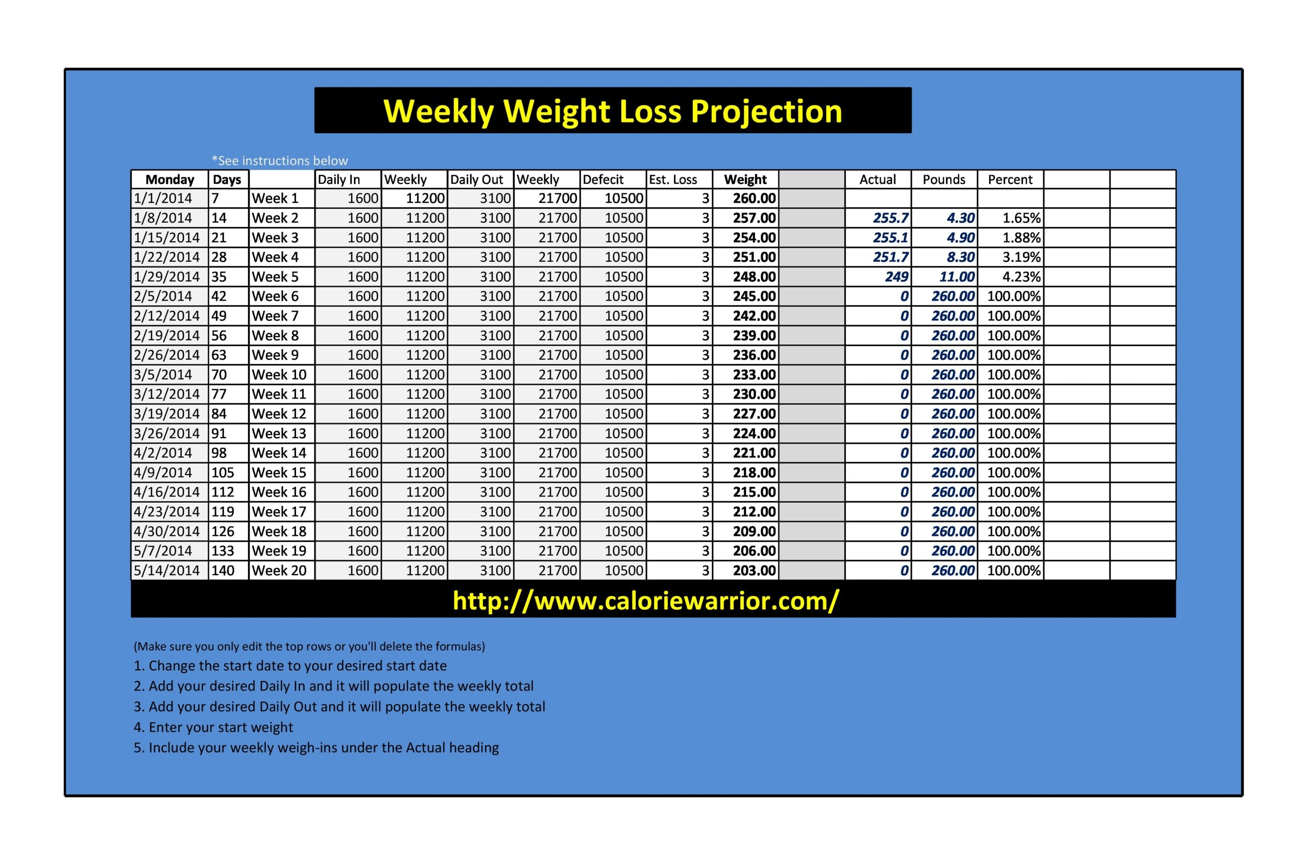 weight loss spreadsheet 16