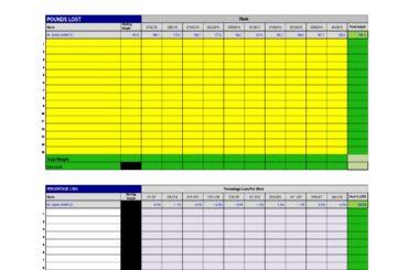 weight loss spreadsheet 17