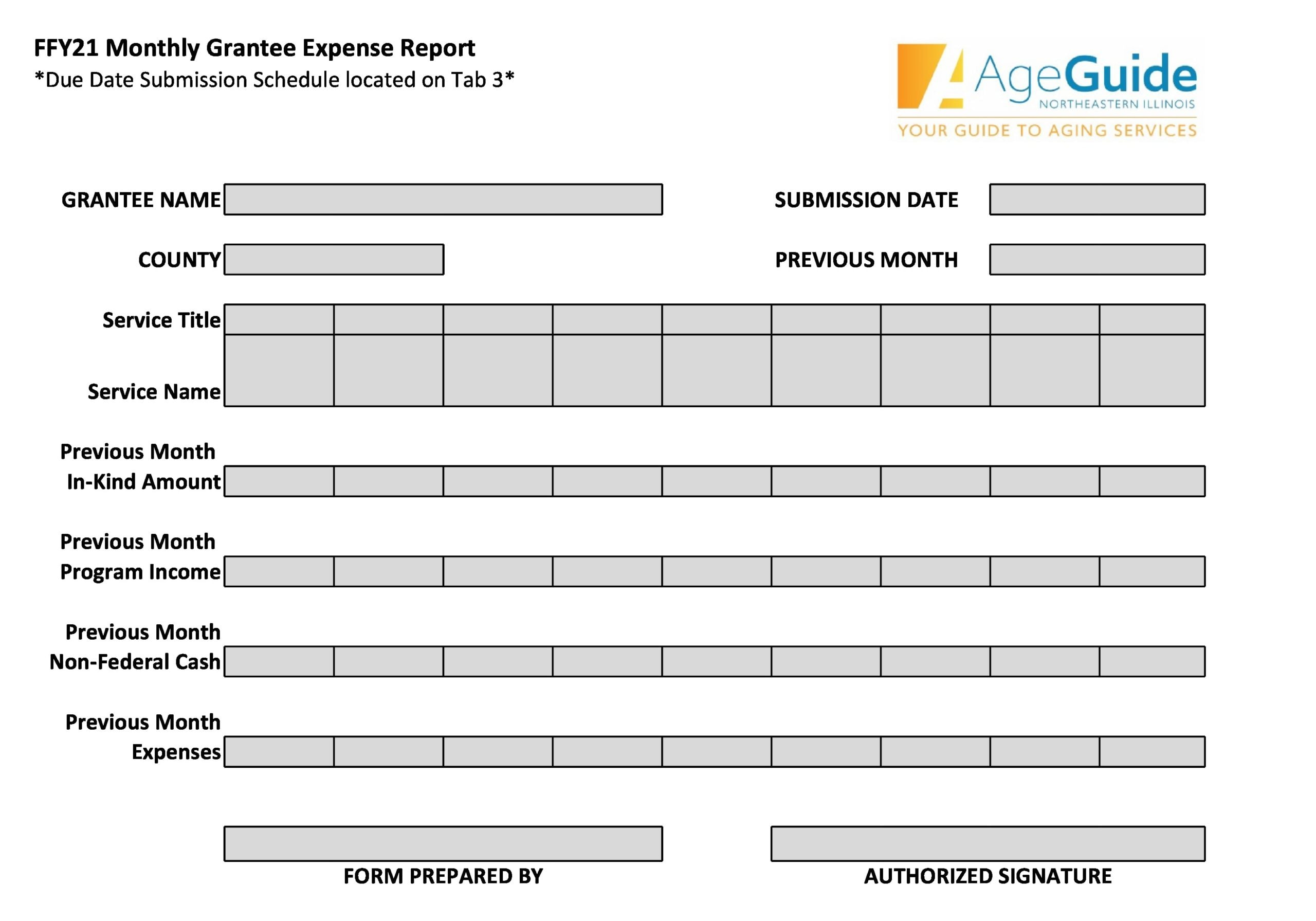 monthly expenses template 13